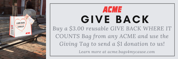 ACME GT Email Banner Ad 1