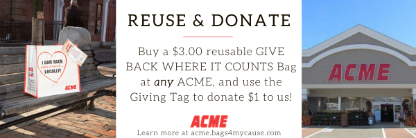 ACME GT Email Banner Ad 2
